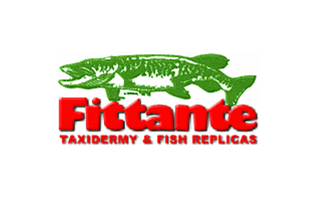 Fittante_Taxidermy